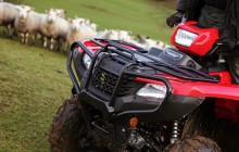 Honda ATV Sheep Farming