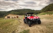 Yamaha SbS Cattle